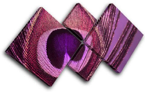 Peacock    PURPLE PINK Abstract - 13-0749(01C)-MP19-LO